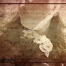 sarah by Sharon A. Henson