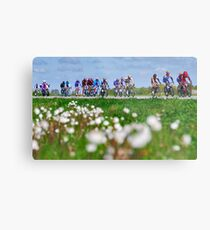 Giro d'Italia in Zeeland Metal Print
