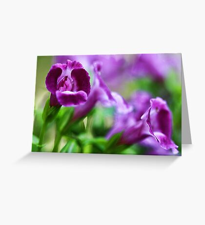 -Greeting A New Day Greeting Card