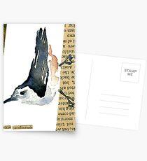 Sitta Carolinensis Postcards