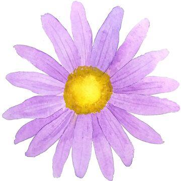 una pequeña acuarela púrpura margarita de ColorandColor