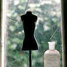 Window display by pwrighteous