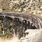 Wrought iron bridge- Taieri Gorge -New Zealand by redkitty