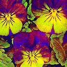 Pansies with Pizzaz by KnutsonKr8tions