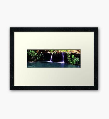 Fern Pool Framed Print