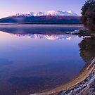 Frosty morning at Lake Otamangakau by Paul Mercer