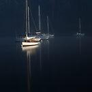 Stillness by Suellen Cook