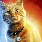Gans die Katze von getro92