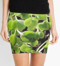 Microgreens seeds botanical Mini Skirt