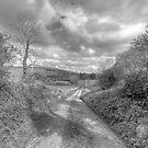 Scenic Burren Road by John Quinn