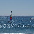 Sailing fun in the sun by Virginia McGowan
