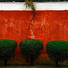 Red & Green by EveW
