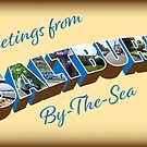 NDVH Greetings from Saltburn-by-the-Sea by nikhorne