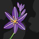 Purple Asphodel Flower by Autumn Asphodel