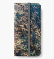Rainbow Grass Four iPhone Wallet/Case/Skin