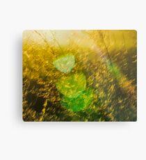 Rainbow Grass Six Metal Print