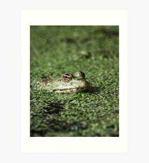 Swamp Goblin Art Print