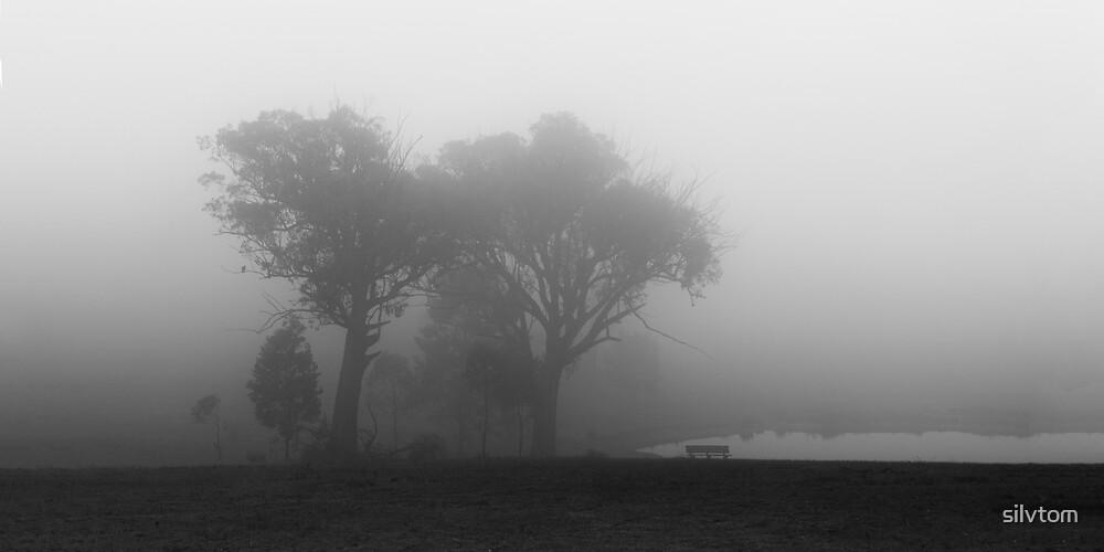 Murchison Gap, Victoria von Silvia Tomarchio