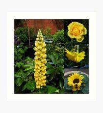 Frühlings- und Sommerblumen-Collage Kunstdruck