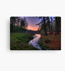Remote Forest Lake Sunset Canvas Print