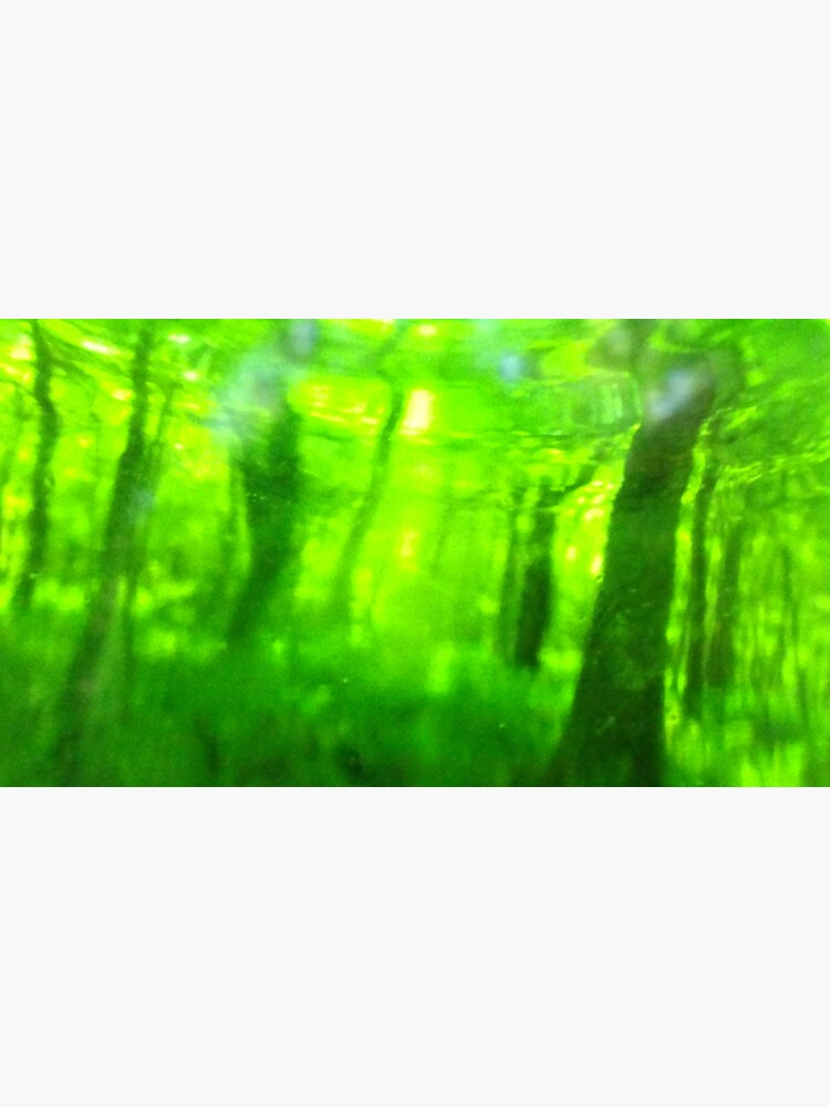 Grünholz Serie Nr. 5 von edend
