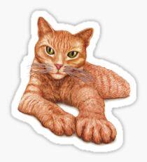 Orange Tabby Sticker