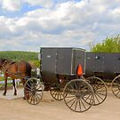Horse & Buggy Parking Only  by ECH52