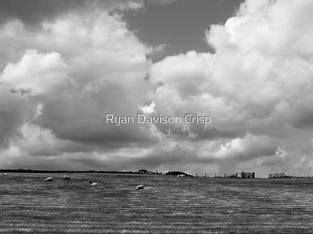 The Field & The Sky by Ryan Davison Crisp