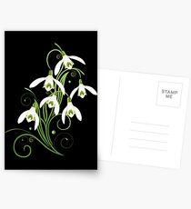 Schneeglöckchen Frühling Blumen Spring Flowers Postkarten