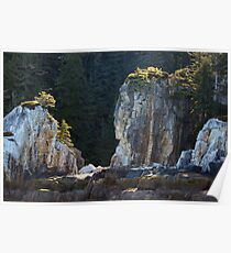 Indian Head Rock Poster