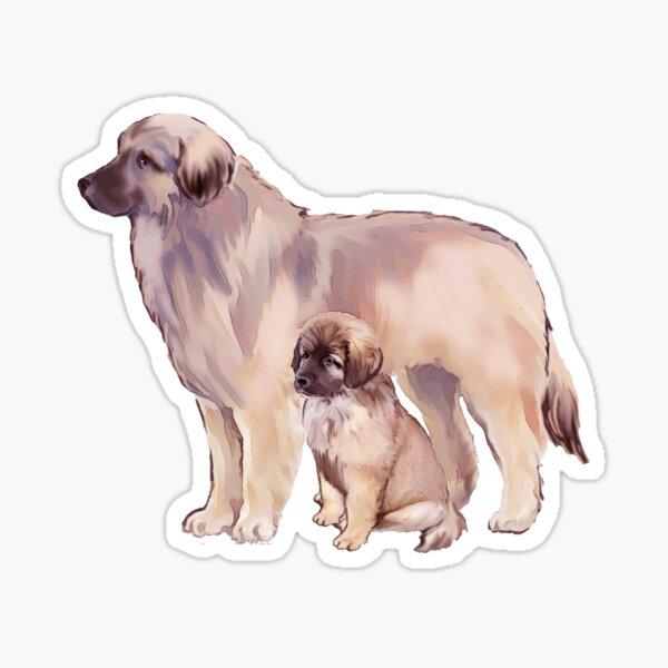 INTERESTPRINT Custom Mens Boxer Briefs Little Puppy Dog with Butterfly XS-3XL