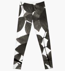 Black and White Natural Patterns Leggings
