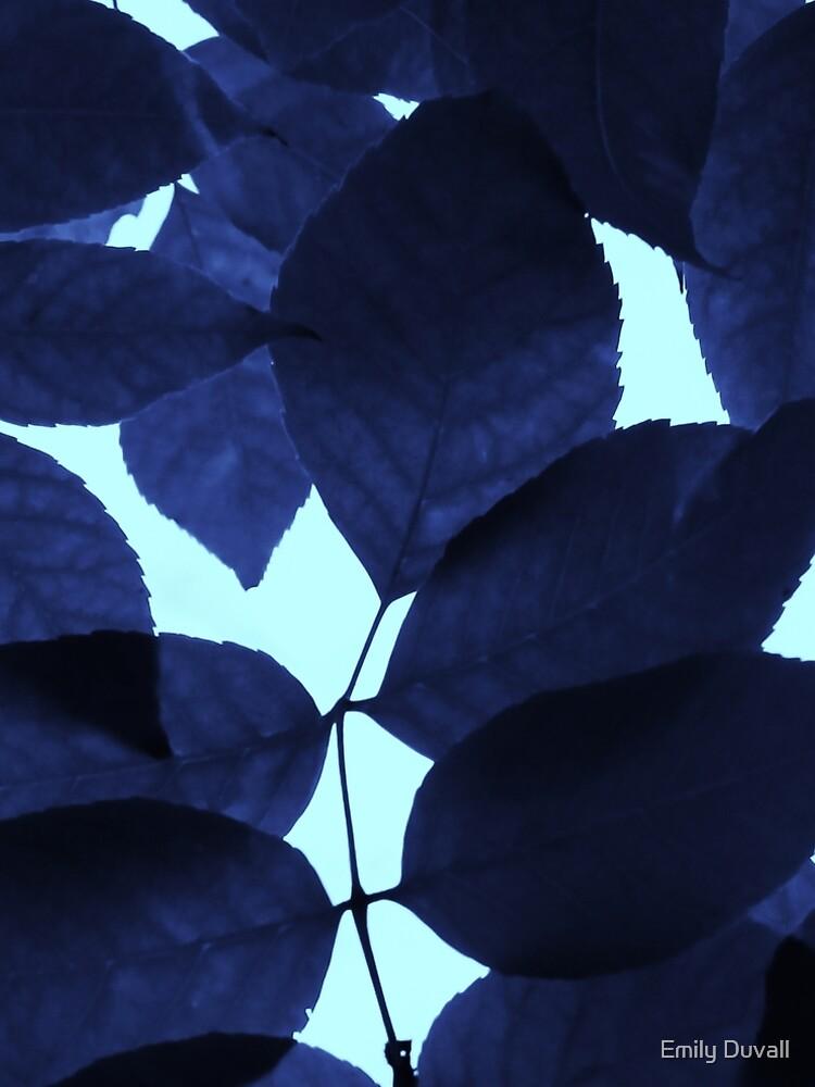 Blue Forest by PeaceAndBeauty