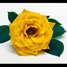 The Yellow Rose by Lisa Brower