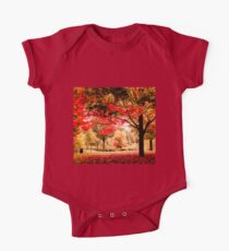 Red Maple in Larz Anderson park. One Piece - Short Sleeve