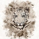 Tiger 4 by artbylucie