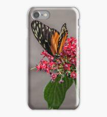 Tiger Longwing iPhone Case/Skin