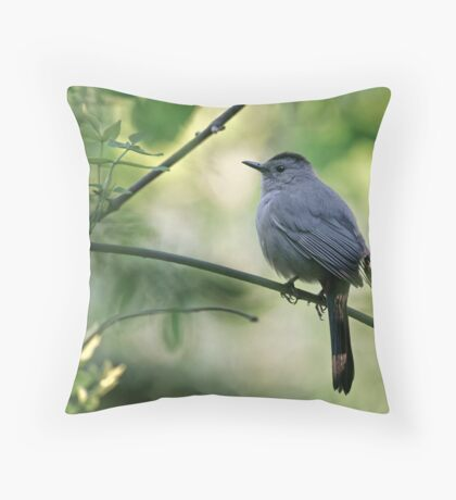 Gray Catbird - Ottawa, Ontario Throw Pillow