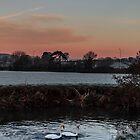 Köstlicher Sonnenaufgang von widdy170