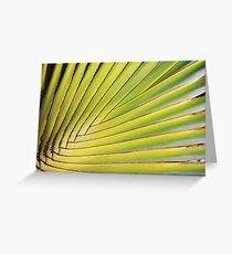 Texture of Green palm Leaf Greeting Card