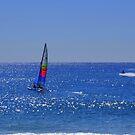 Sailing fun in the sun #2  by Virginia McGowan