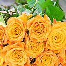 Flowers of Love by Viktoryia Vinnikava