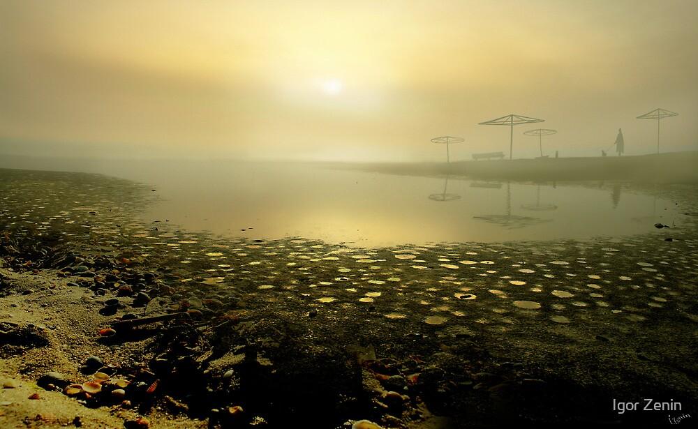 November Stroll by Igor Zenin