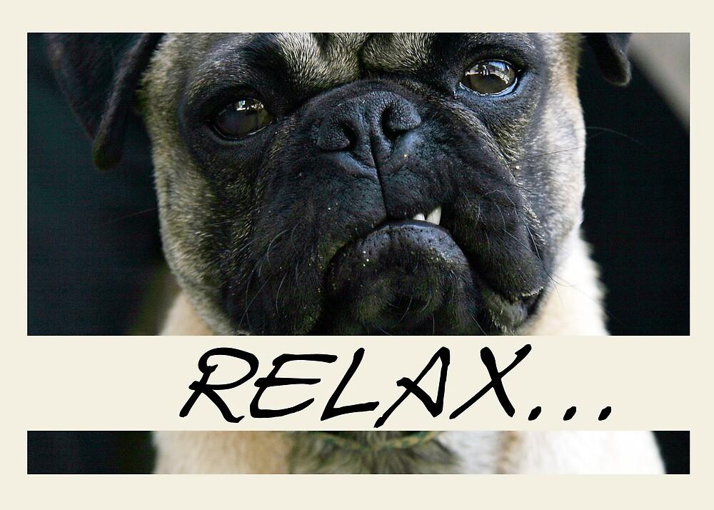 Pug Dog, Relax, Humor by SandraRose
