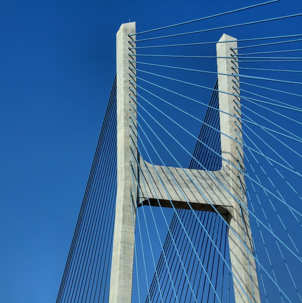 Phu My Bridge  by Christopher Biggs