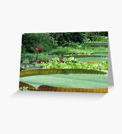my pad or yours... Greeting Card