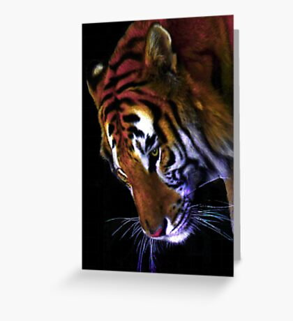 Grace of a Tiger Greeting Card