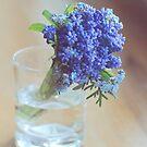 blue spring by CoffeeBreak