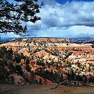 Exploring Southwest Utah by Barbara Manis