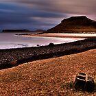 Coral Beach by Roddy Atkinson